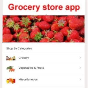 Webprogr grocery app developers